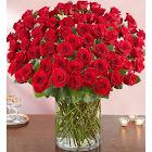1-800-Flowers 100 Premium Long Stem Red Roses