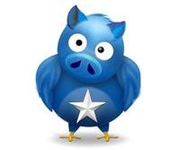 TWITTER PIG 4