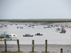 Kenai River Boat Swarm