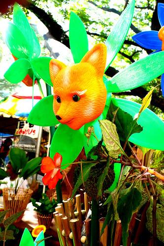 salcedo foxy pinwheel