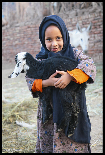 little girl with young goat