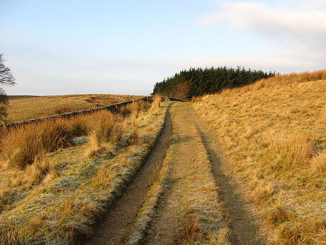 File:A farm track on Auldshiels Hill - geograph.org.uk - 634704.jpg
