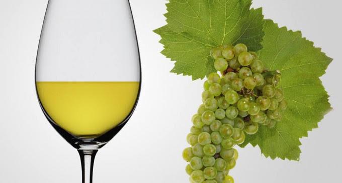Şarabi Haller