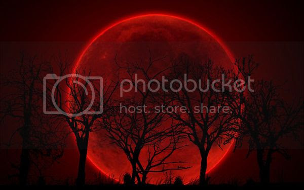 photo bloodtreemoon_zpsapap9pzg.jpg