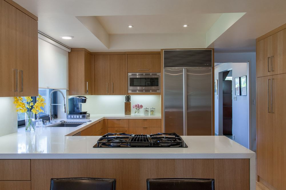 MODULAR KITCHEN 3D IMAGES IN DELHI - INDIA