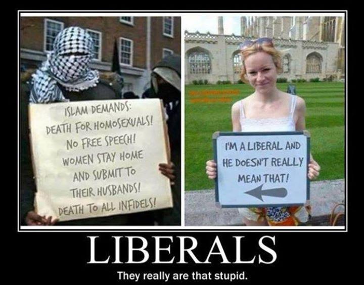http://www.theaugeanstables.com/wp-content/uploads/2014/08/liberals.jpg