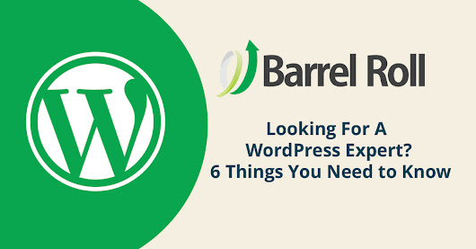Looking For A WordPress Expert? 6 Things You Need to Know - Barrel Roll