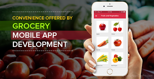 Convenience offered by Grocery Mobile App Development