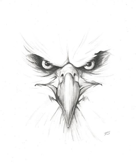 angry eagle  rshaw  deviantart