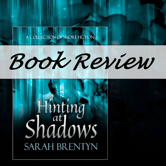 Hinting at Shadows #BookReview by D.G. Kaye