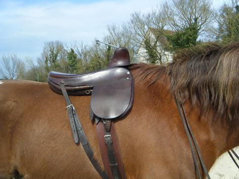 monter en amazone signifie chevaucher avec les deux jambes du mme ct du cheval Selle amazone