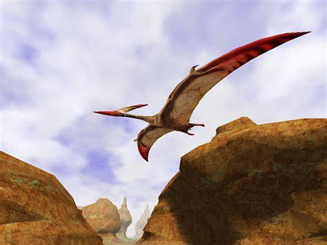canyon flight  mac os  screensaver