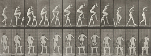 Woman Stepping on and over a Trestle: Plate 178 fromAnimal Locomotion (1887) Eadweard J. Muybridge (American, born England. 1830–1904) 1884-86. Collotype MoMA