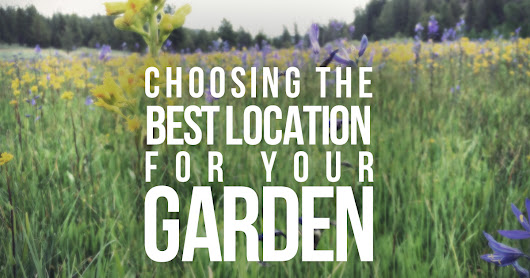 Choosing the Best Location for your Garden, Orchard or Farm site