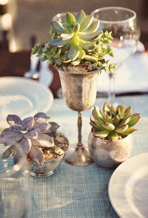35 Succulent Wedding Ideas for Your Big Day   succulents