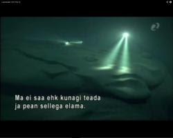ano1-documentaire7.jpg