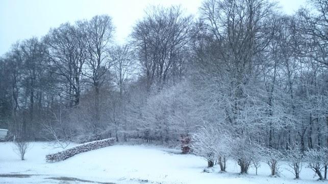 sneen falder