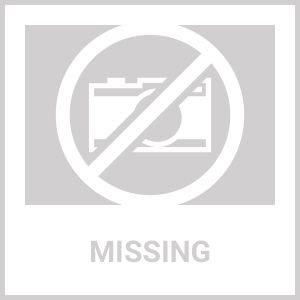 Resultado de imagen para ATLANTA BRAVES logo