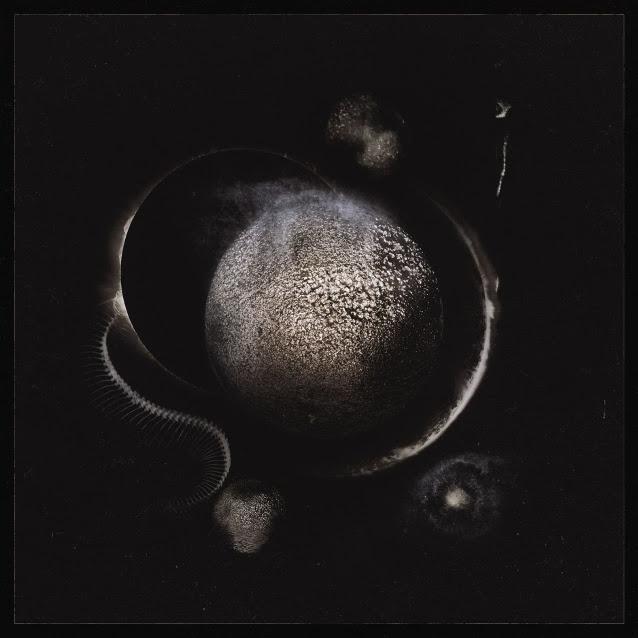 Αποτέλεσμα εικόνας για enthroned cold black suns review