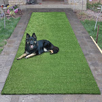 """Garden Green Indoor/Outdoor Artificial Grass Turf Area Rug 2'7"""" x 9'10"""" Latex Free Polypropylene Solid More than 1 inch"""