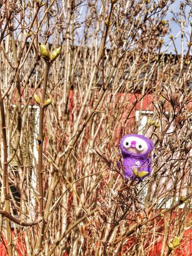 tiny lilacs inspector
