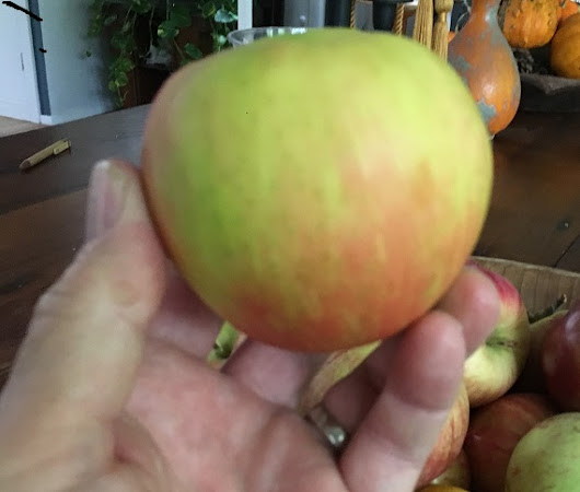 Top Ten Apples to look for in the Hudson Valley's farm stands. - Global Property Systems