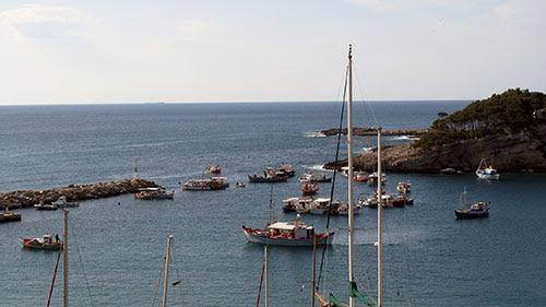 Σε απόγνωση αλιείς της Αλοννήσου