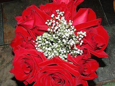 valentineweb