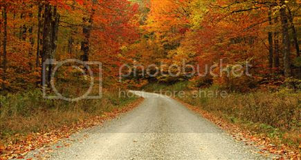 fall landscapes photo: #pbNature - Fall Landscapes Leaves changing colour. landscape_fall_colors_041010m49_zpsdqxptas2.jpg