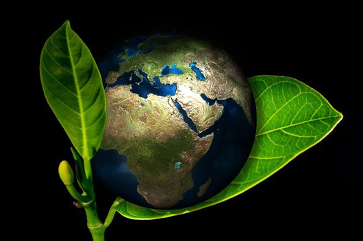 Promote Your Brand's Eco-Friendly Philosophy | Gossett Marketing