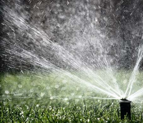 Saving Water with an Efficient Irrigation System