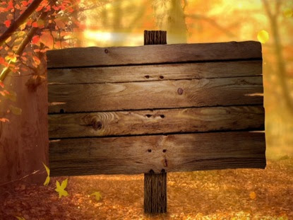 Fall Forest Blank | Life Scribe Media | WorshipHouse Media
