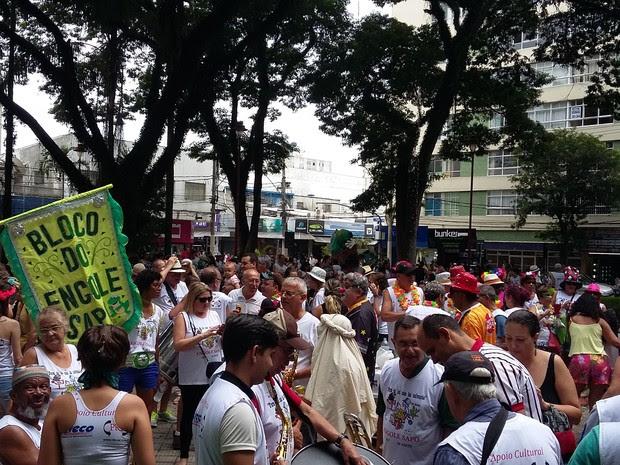 Bloco Engole Sapo percorreu as ruas de São José (Foto: Leonardo Medeiros/G1)