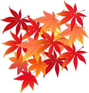 紅葉のイラスト秋無料 季節のあいさつ文