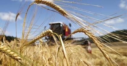 Экспортные пошлины на зерно «заморозят» еще минимум на два сезона