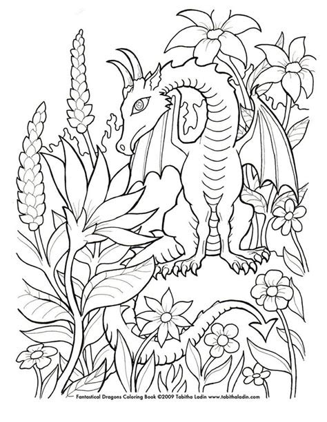 images  coloring pages  young