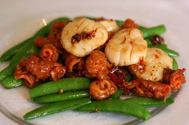 Stir-fried Coral Clam and Scallops in XO Sauce