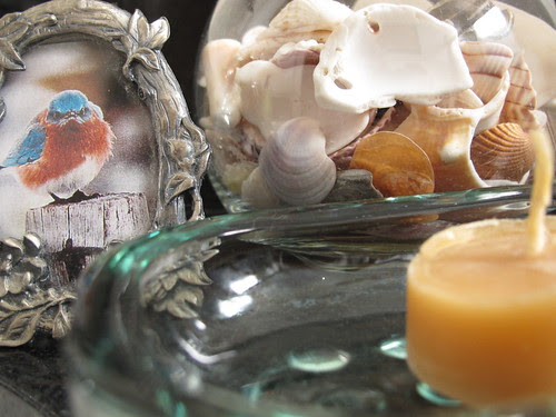 Shells on the sink countertop