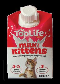 KittenMilk