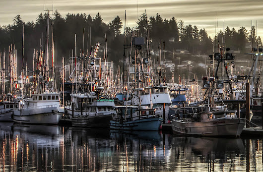 Yaquina Bay Boat Basin At Dawn by Thom Zehrfeld