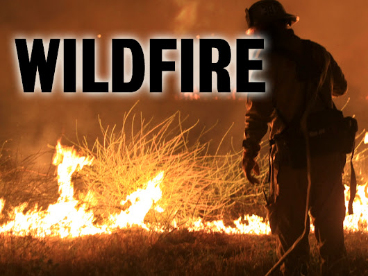 Brush fire near Temecula held to 3 acres