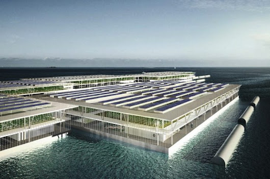Solar-powered floating farm could produce 20 tons of vegetables daily - NationofChange