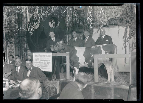 Earl Ross, Julius L. Meier, J. C. Penney, and John T. Dougall posing with bull at luncheon - OHS Digital Collections