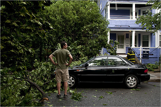 Carlos Cabrera looked at his wife's car which had its windshield smashed and body damaged when a tree fell on Montgomery Street during Sunday's violent thunderstorm.