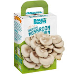 Back to the Roots Mini Farm, Organic, Mushroom