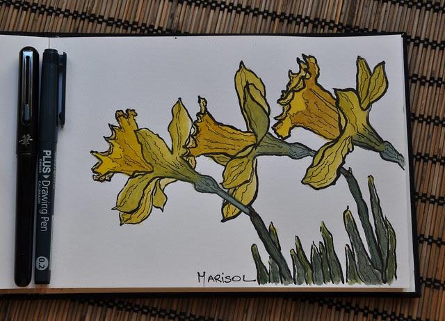 Daffodils in watercolor