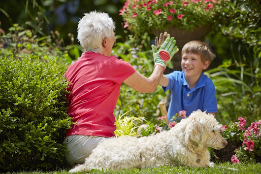 Spring Activities for Seniors and the Family to Enjoy Together