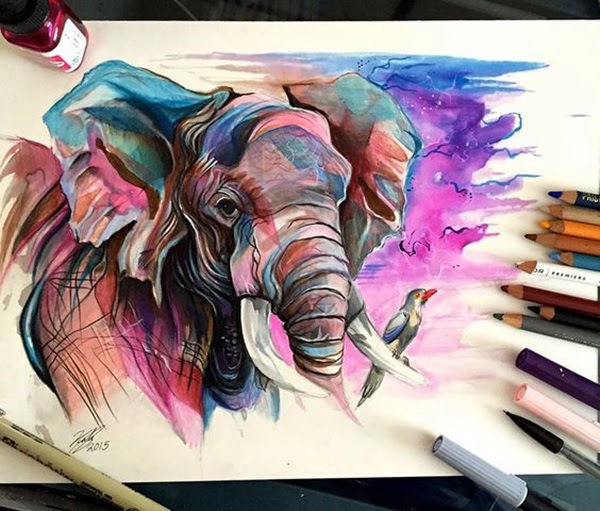 color pencil drawing Examples (42)