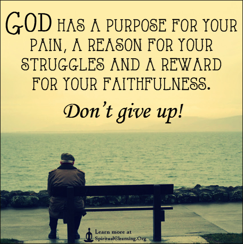 God Has A Purpose For Your Pain A Reason For Your Struggles And A