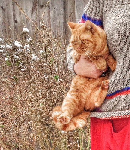 the sweater and the perfect accessory